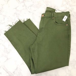 NWT OLD NAVY Perfect Straight Pants Olive Green 16